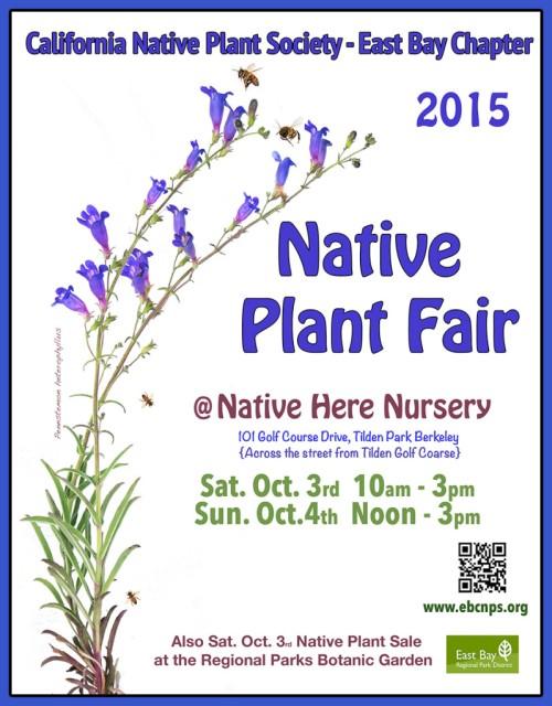 plant-fair-poster-2015-900-799x1024